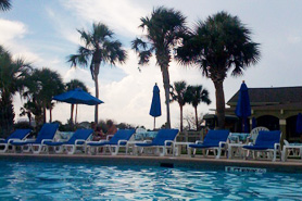 Pool at Galveston by the Palm Tree